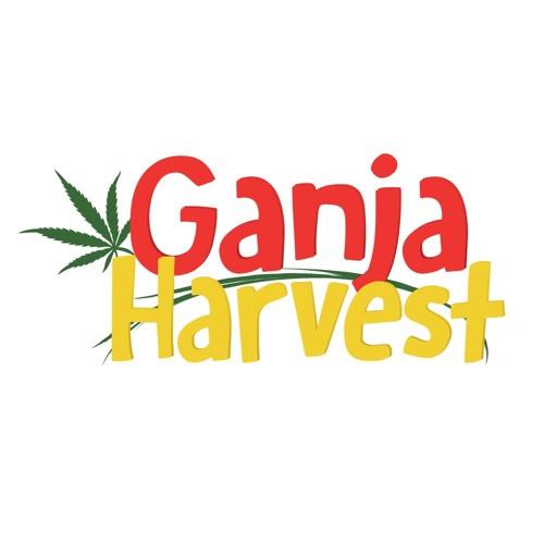 Ganja Harvest's avatar