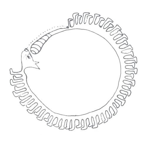 Дримкрафт's avatar