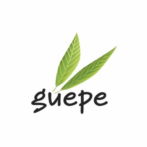 GUEPE's avatar