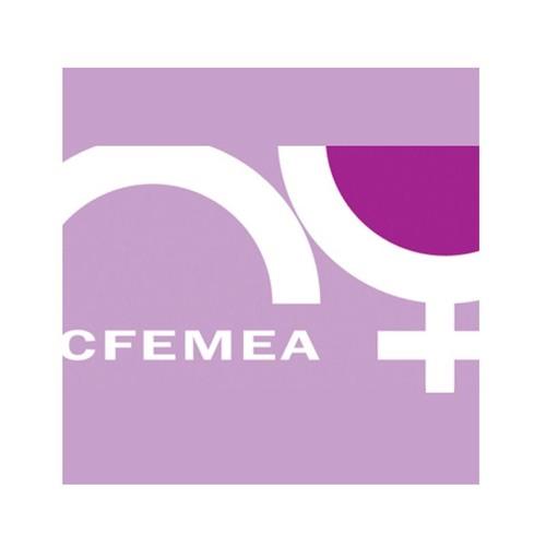 Cfemea - Centro Feminista de Estudos e Assessoria's avatar