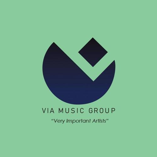 VIA Music Group's avatar
