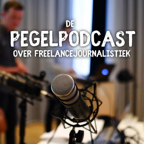 De Pegelpodcast's avatar