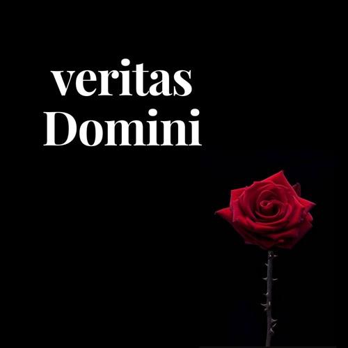 veritas Domini's avatar