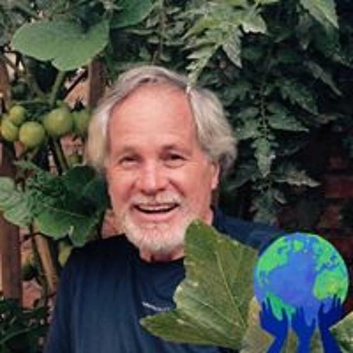 Paulo Luiz Vieira's avatar