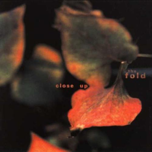 The Fold's avatar