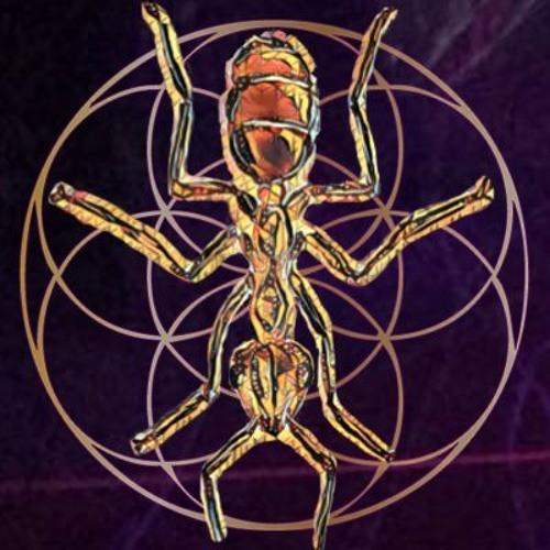 Ants of Trance's avatar