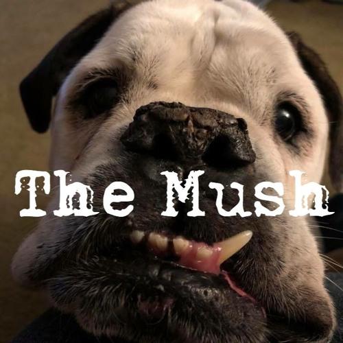 The Mush Podcast's avatar
