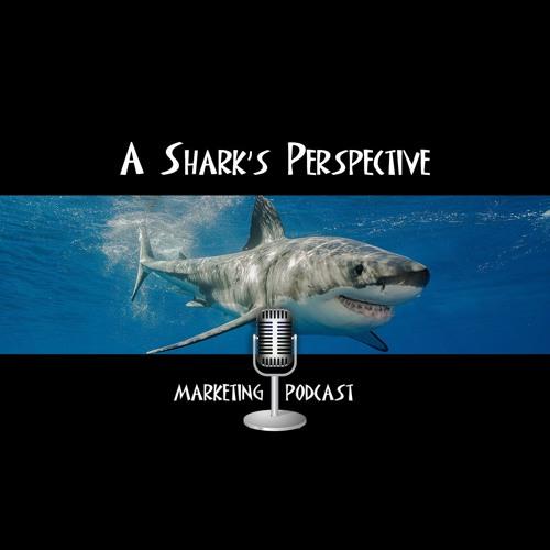 A Shark's Perspective's avatar