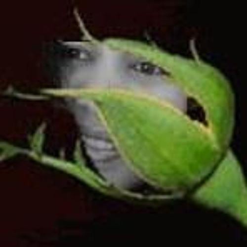 Rose Rocha's avatar
