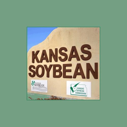 KansasSoybean's avatar