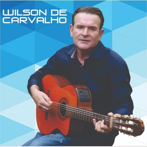 Wilson de Carvalho's avatar