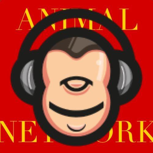 ANIMAL REPOST's avatar