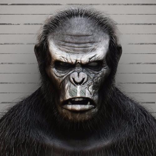 Коба из планеты обезьян картинки