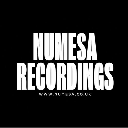 Numesa Recordings's avatar