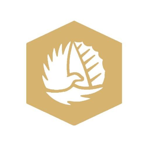 Wakana Reunion's avatar