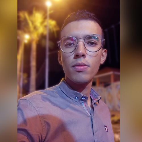 Mohamed Elkon's avatar