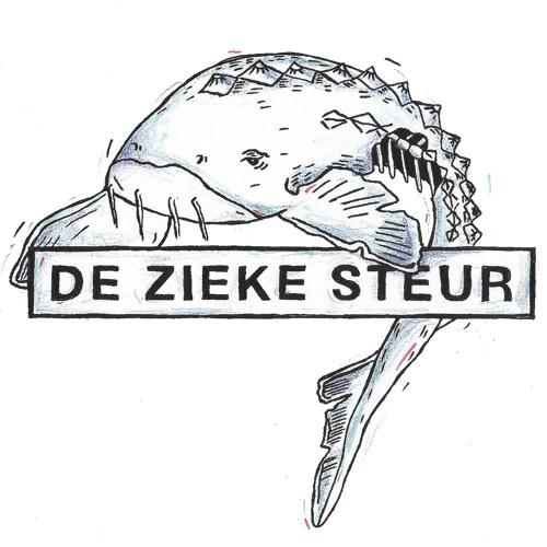 De Zieke Steur's avatar