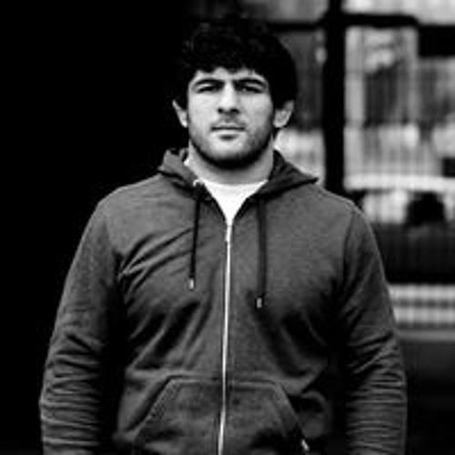 Artur  Akopyan's avatar