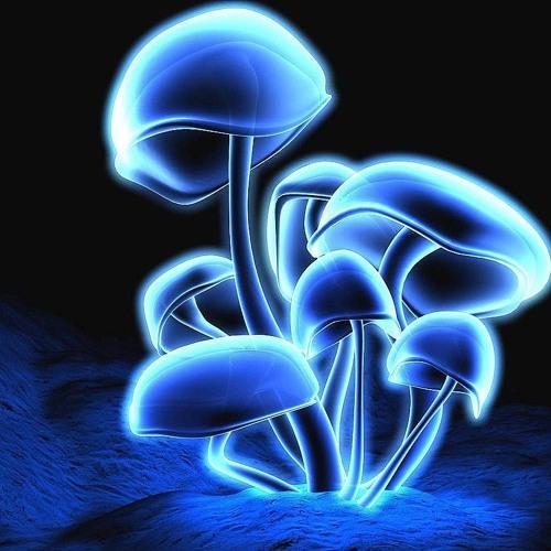 psydraft's avatar