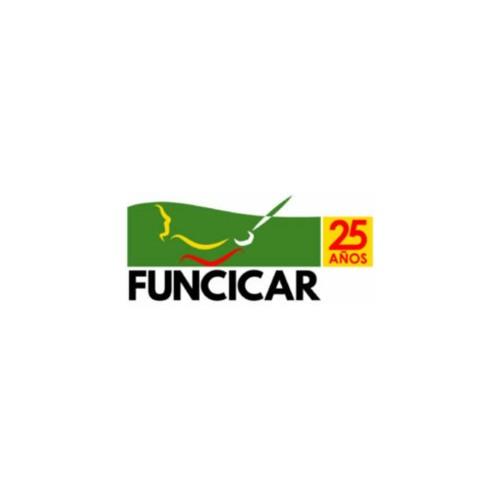 Funcicar's avatar