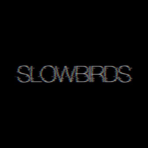 slowbirds's avatar