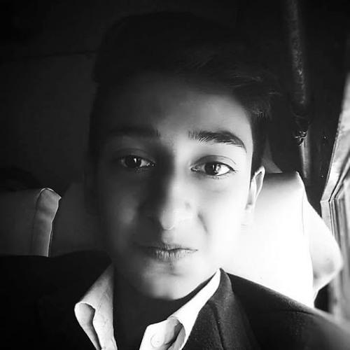 Bhanu Pratap Singh Tanwar's avatar