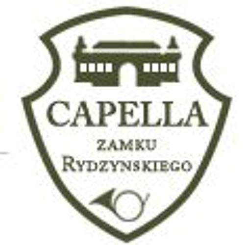CapellaZamkuRydzyńskiego's avatar