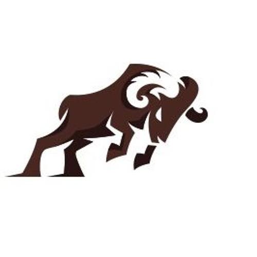 Buffalo Promotions's avatar