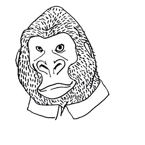 WEIRDOS's avatar