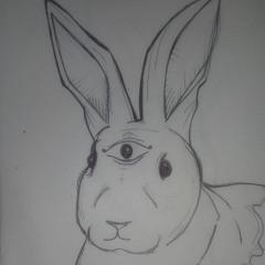 Tattered Rabbit
