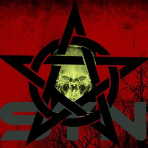 S.T.N's avatar