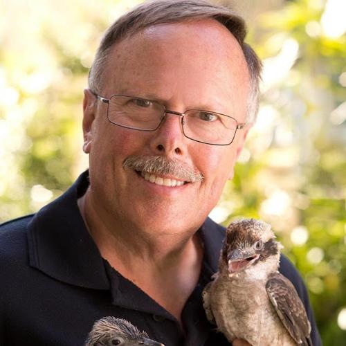Peter Springett's avatar