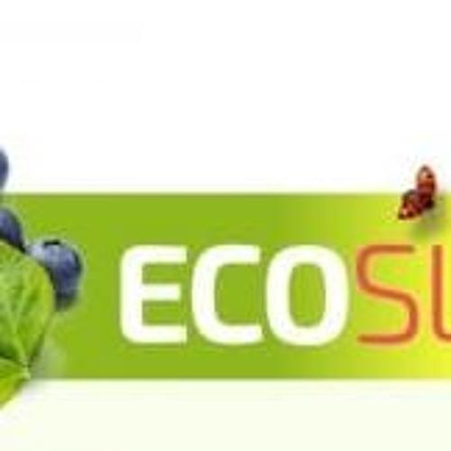 EcoslimTPC's avatar