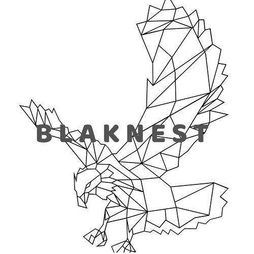 BLAKNEST's avatar
