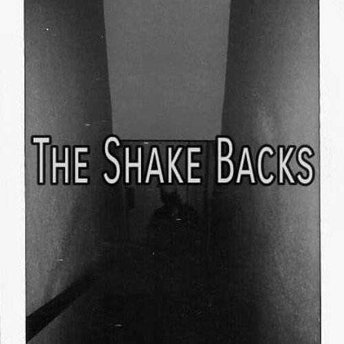The Shake Backs's avatar