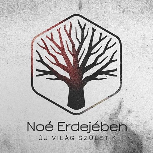 Noé Erdejében's avatar