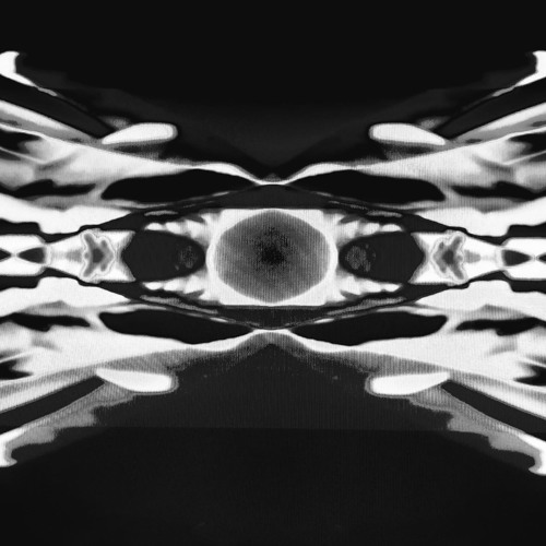 Sub Denizen's avatar
