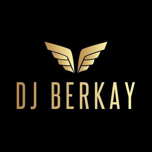 DJ Berkay's avatar