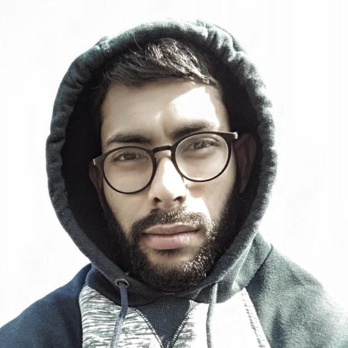 Rafael Amaral Salgueiroza's avatar