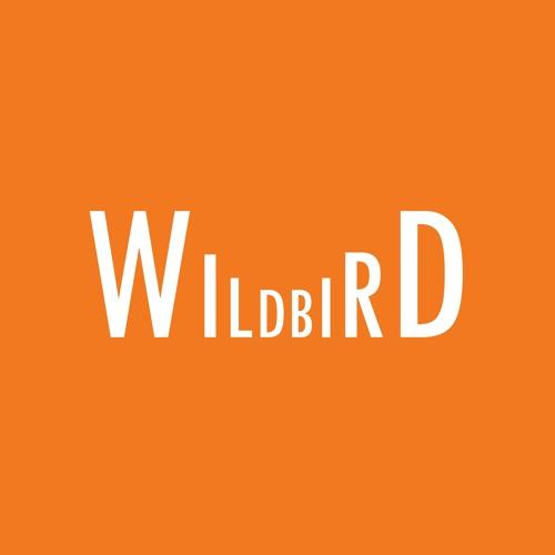 wildbirdmusic's avatar