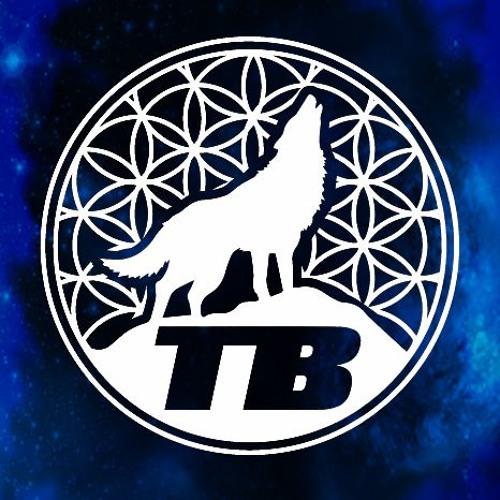 The Brotherhood's avatar