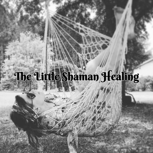 The Little Shaman Healing's avatar