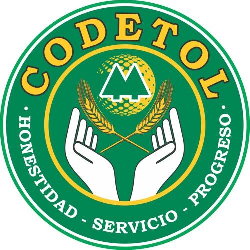 CODETOL's avatar