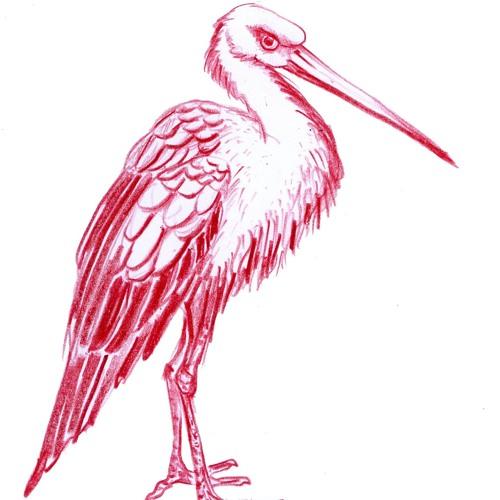 Red Stork's avatar