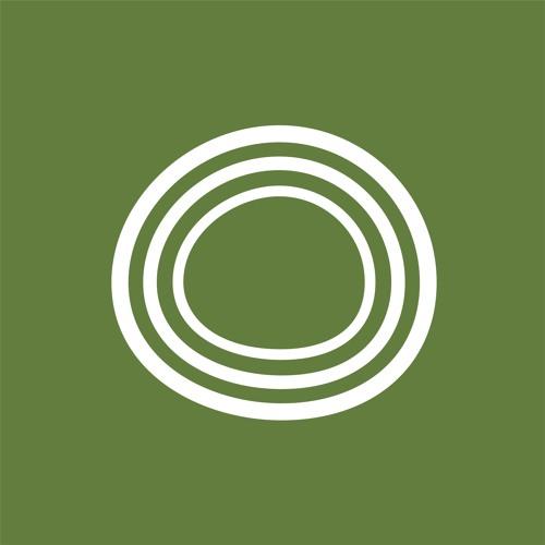 BoxJelly x The Company's avatar