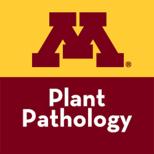 UMN Plant Pathology's avatar