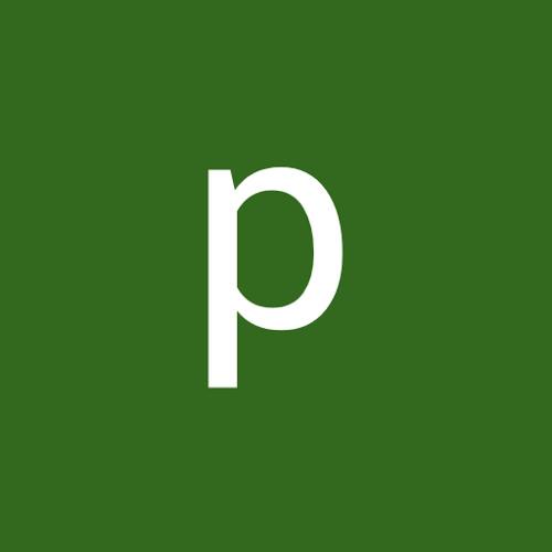 pedro magalhaes's avatar