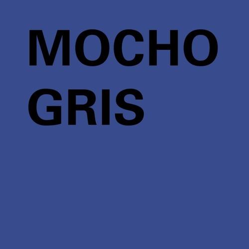 mocho gris's avatar