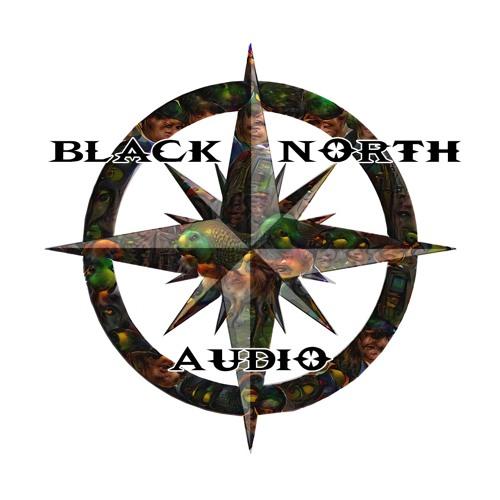 Black North Audio's avatar