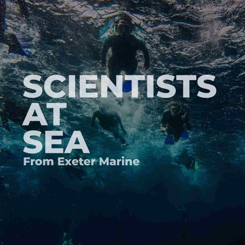 Scientists at Sea's avatar
